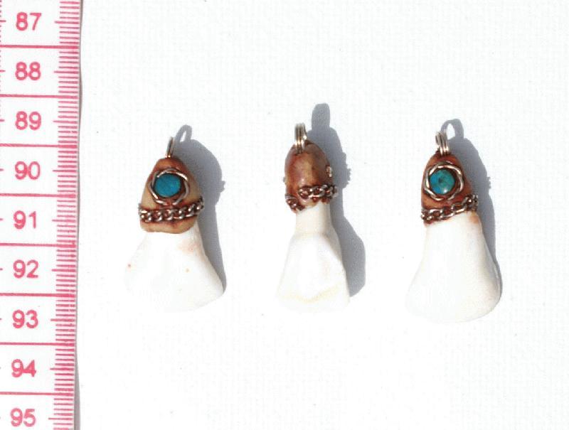 distribuidor mayorista 8f2c3 a45a9 Pendientes de dientes, Bisuteria Peruana