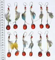 Earrings with feathers and seeds